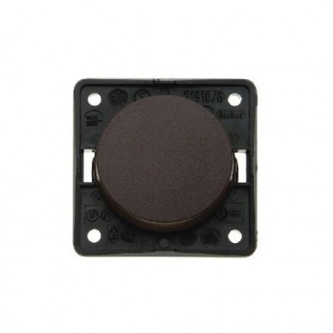 Berker Single Rocker Switch